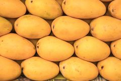 Mango som är till salu på ett lokalt fruktlager Arkivfoto