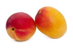 Mango som isoleras på den vita bakgrunden Royaltyfri Fotografi