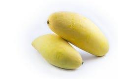 Mango som isoleras på vitbakgrund Arkivfoton