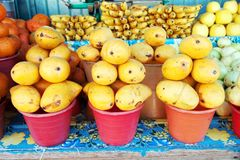 Mango. Some bucket with mango at the market Royalty Free Stock Photography