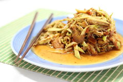 Mango spicy salad Stock Image
