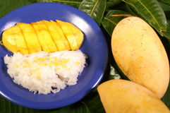 Mango sticky rice. With cconut oil Royalty Free Stock Images