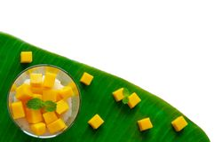 Mango sticky rice and coconut milk decorate in the glass put on banana leaf royalty free stock photo