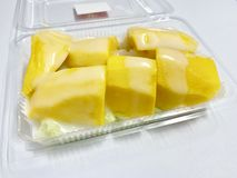 mango and sticky rice royalty free stock image