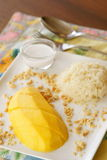 Mango with Sticky Rice, Thai Dessert. Royalty Free Stock Photos