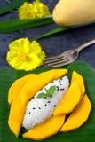 Mango with sticky rice. Thai Dessert Stock Photo