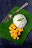 Mango with sticky rice. Thai Dessert Stock Image