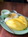 Mango sticky rice is a Thai dessert made with glutinous rice, fresh mango and coconut milk. It is a traditional Thai food eaten wi Royalty Free Stock Image