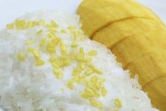 Mango Sticky Rice Royalty Free Stock Images