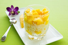 Mango sticky rice Royalty Free Stock Photography