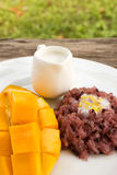Mango with sticky rice, traditional dessert of thailand. Royalty Free Stock Images
