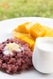 Mango with sticky rice, traditional dessert of thailand. Royalty Free Stock Image