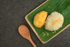 Mango Sticky Rice Stock Image
