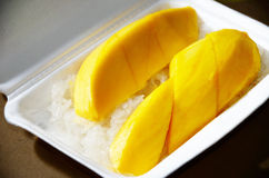 Mango with sticky rick, Native Thai style of dessert, Royalty Free Stock Photography