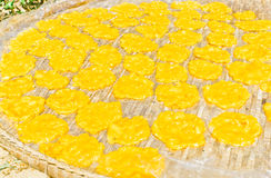 Mango stir, is being dried in the sun, in the tray. Royalty Free Stock Image