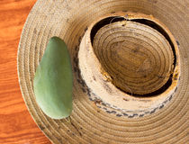 Mango & straw hat stock photography