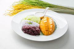 Mango with Sweet Sticky Rice. Thai style tropical desert Stock Photos