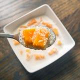 Mango and Tapioca Pudding in Coconut Milk Stock Images