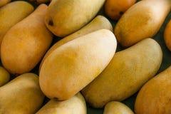 Mango tropical fruit  Stock Image