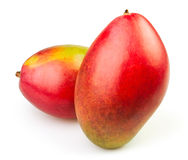 Mango two Royalty Free Stock Image