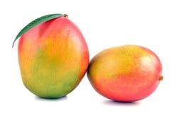 Mango. Two fresh mango on white background Royalty Free Stock Image