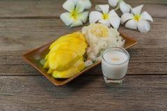 Mango und klebriger Reis Lizenzfreie Stockfotos