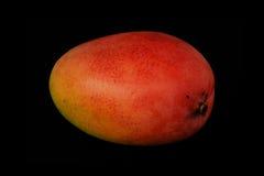 Mango van rode kleur op een zwarte achtergrond Stock Foto