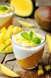 Mango vanilla whipped cream dessert Royalty Free Stock Photo