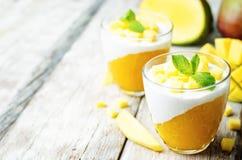 Mango vanilla whipped cream dessert Stock Photography