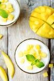 Mango vanilla whipped cream dessert Stock Photos