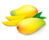 Mango vector illustration. Royalty Free Stock Photo