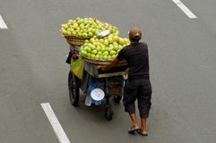 Mango vendor Stock Photography