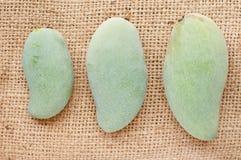 Mango verde Immagini Stock