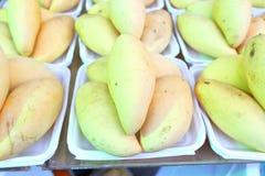 Mango verde Fotografía de archivo libre de regalías
