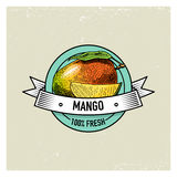 Mango Vintage, hand drawn fresh fruits background, summer plants, vegetarian and organic citrus and other, engraved. Royalty Free Stock Photography