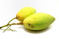 Mango voor gezondheid Royalty-vrije Stock Fotografie