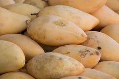 Mango w koszu Obraz Stock