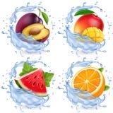 Mango, Wassermelone, Orange, Pflaume im Wasserspritzen Vektorikonensatz der frischen Früchte realistischer lizenzfreie abbildung