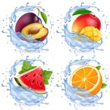 Mango, watermelon, orange, plum in water splash. Fresh fruits realistic vector icon set.  royalty free illustration