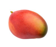 Mango  on white background Stock Images