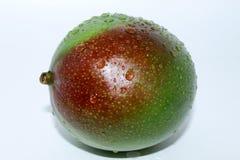 Mango on white background stock image