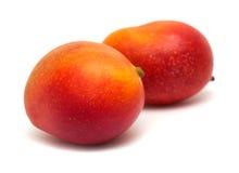 Mango  on white Stock Photos