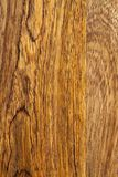Mango wood bacground. Mango wood smooth board bacground with different colors of layers Royalty Free Stock Image