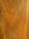 Mango Wood grain close up. Royalty Free Stock Photography