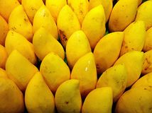 Mango. Yellow fruit Stock Photos