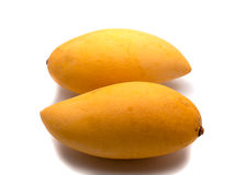 Mango yellow fruit Royalty Free Stock Photo