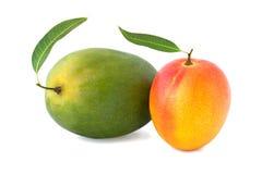 Mango zwei mit einem Blatt lokalisiert auf Weiß Lizenzfreies Stockbild