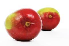 Mango5 Royalty Free Stock Images