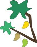 Mangobaum Stockbild