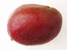 Mangoe υγρό και φρέσκο Στοκ φωτογραφίες με δικαίωμα ελεύθερης χρήσης
